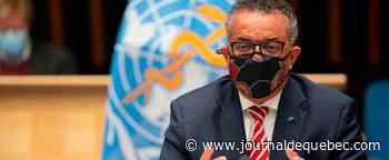 COVID-19: « Nous ne devons pas baisser les bras » dans la lutte contre la pandémie, exhorte le chef de l'OMS