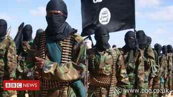 Somalia conflict: Al-Shabab 'collects more revenue than government'