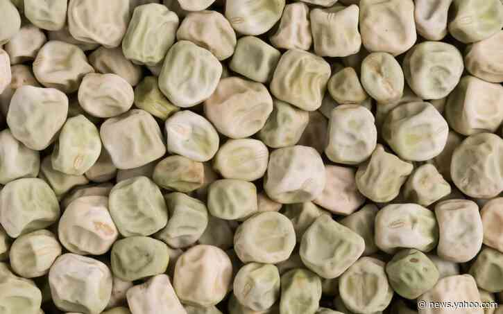 'Super pea' could reduce risk of Type 2 diabetes, researchers find