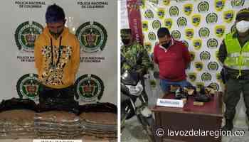 Incautaciones de marihuana en Paicol e Isnos - Noticias