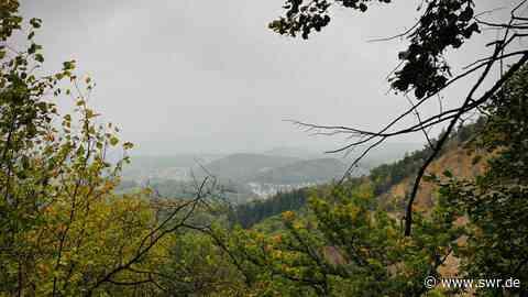Zwei Junge Männer in Birkenau vermisst | Mannheim | SWR Aktuell Baden-Württemberg | SWR Aktuell - SWR
