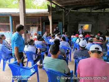 Conforman primera cooperativa de productores de maíz en Saposoa - Diario Voces