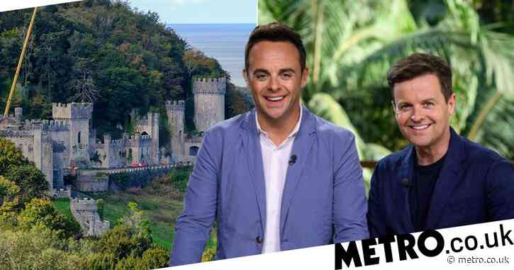 I'm A Celebrity 2020: Castle pleads with public to help them raise £50k to restore old building
