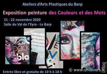Exposition peinture des Couleurs et des Mots samedi 21 novembre 2020 - Unidivers