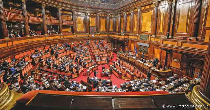 M5s, Ettore Licheri è il nuovo capogruppo al Senato. Alla Camera Rina De Lorenzo annuncia il passaggio dal Movimento a Leu