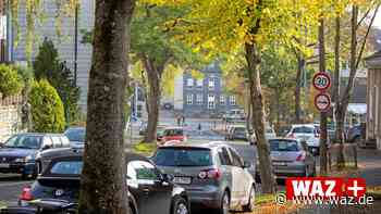 Trotz Protesten: Bäume am Kesterkamp in Bochum sollen fallen - Westdeutsche Allgemeine Zeitung