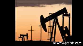 El precio del petróleo abre la semana en fuerte baja - La Prensa Panamá