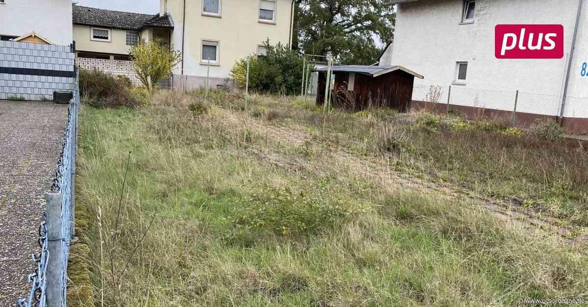 Rattenplage in Raunheim? - Echo Online