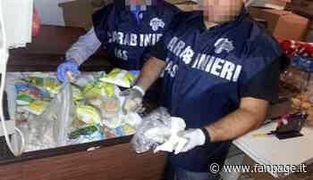 Trattoria da incubo a San Giuliano Milanese: scoperti e distrutti 25 chili di alimenti scaduti - Fanpage.it