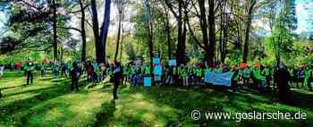 Klinik-Streik in Seesen: Druck im Kessel steigt - Region - Goslarsche.de - GZ Live