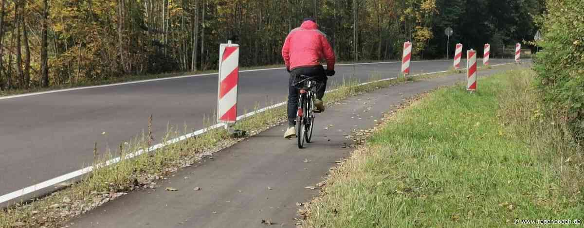 Bund der Steuerzahler kritisiert den Radweg zwischen Gottenheim und Umkirch - Regenbogen