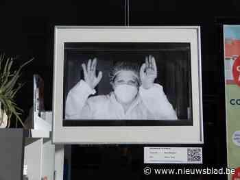 Foto's sieren uitstalramen (Sint-Niklaas) - Het Nieuwsblad