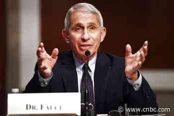Dr. Anthony Fauci says U.S. is in a 'bad position' as daily coronavirus cases hit record highs - CNBC