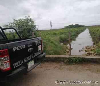 Reportan normalidad en Peto y Tzucacab - El Diario de Yucatán