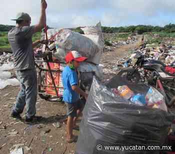Buscan ingreso familiar en Peto - El Diario de Yucatán