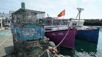 Mi'kmaw band raises concerns about Sipekne'katik lobster fishery