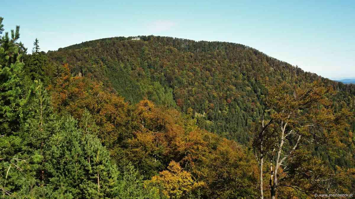 Gutensteiner Alpen, Furth a.d. Triesting, Bezirk Baden (NÖ): Das Kieneck im Herbst - meinbezirk.at