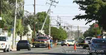 Cortes de energía, caída de árboles y cortocircuitos por vientos en Mexicali - ELIMPARCIAL.COM