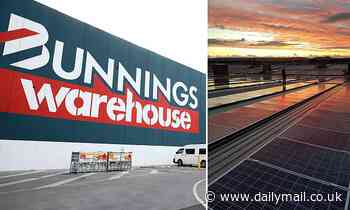 Bunnings vows to be run on 100 per cent renewable energy by 2025