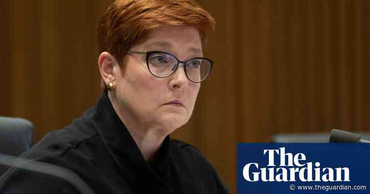 Marise Payne declines to welcome adoption of net zero emissions target by Japan and South Korea