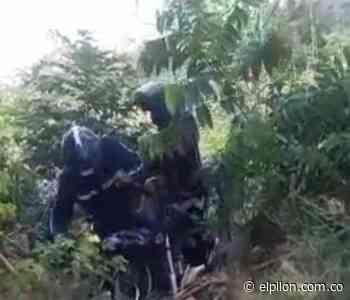Mataron a cobradiario por robarle la moto en La Jagua de Ibirico - ElPilón.com.co