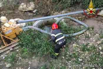 Sacile: nutria intrappolata, intervengono i Vigili del Fuoco per liberarla - Udine20 2020