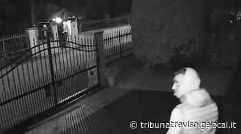 Pieve di Soligo e Refrontolo, videosorveglianza in funzione dopo due anni di attese e ritardi - La Tribuna di Treviso