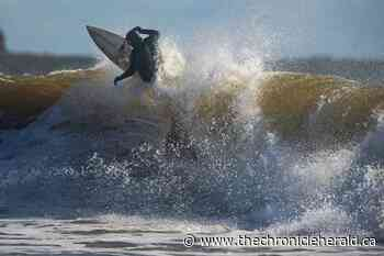 Making waves at Lawrencetown Beach - TheChronicleHerald.ca