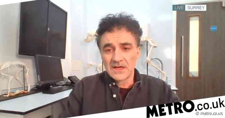 Super Vet Noel Fitzpatrick 'emotional wreck' after beloved dog was run over in front of him