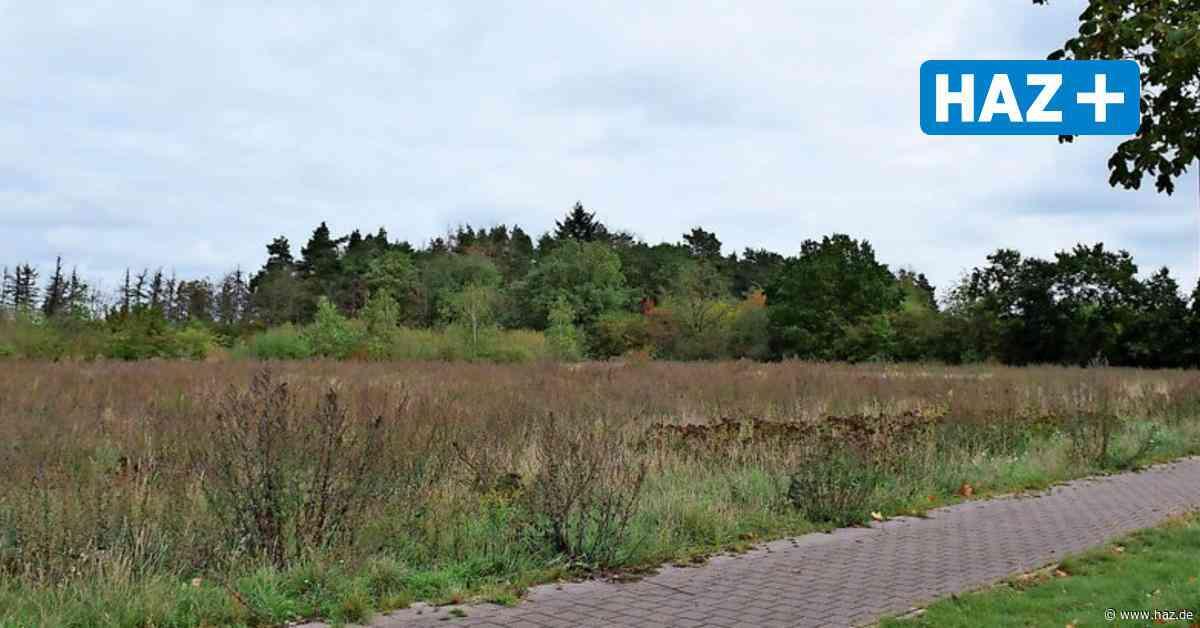 Burgdorf: Neubaugebiet bietet Wohnungen für 750 Menschen - Hannoversche Allgemeine