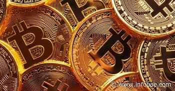 Qué pasará con el bitcoin: en medio de un salto en el precio de 20%, un gurú de Wall Street explicó cuál será el futuro de la criptomoneda estrella - infobae