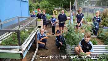 Garden teaching Raymond Terrace Public School students lifelong lessons - Port Stephens Examiner