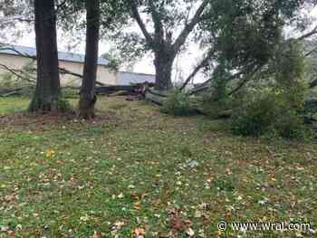 PHOTOS: Storm damage around the Triangle as Zeta brings 50 mph gusts
