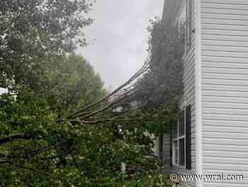 Nearly 60,000 without power, multiple Triangle businesses close due to outages, downed trees