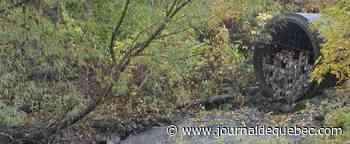 Des égouts déversés dans la nature