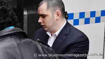 Basher was in 'drug-induced psychosis' - Blue Mountains Gazette