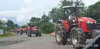 Arroceros de Alanje exigen al Mida pago de compensación - Crítica Panamá