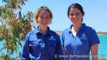 Recruits boost Northern Beef project