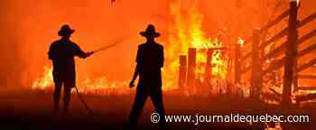 Australie: les catastrophes seront plus «graves et fréquentes», selon la commission des feux
