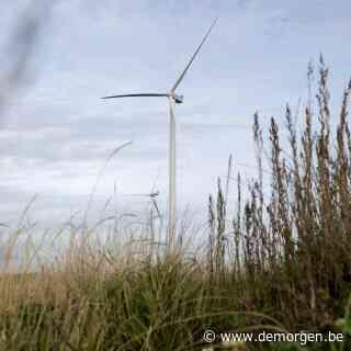 Deens onderzoek besluit: windmolens vormen amper gevaar voor vogels