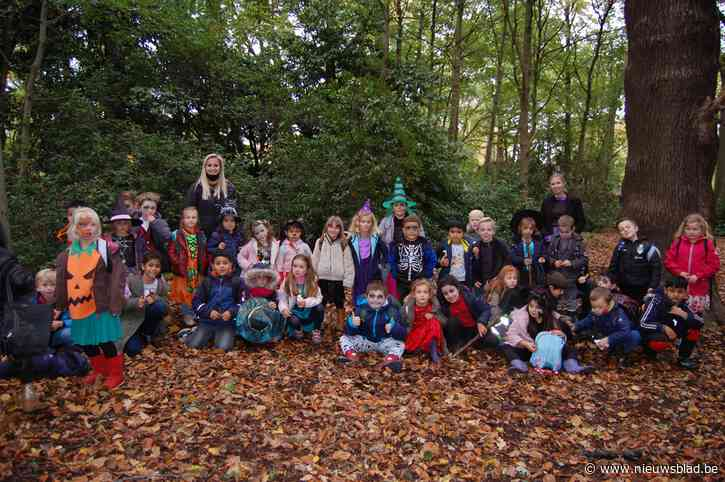"""Gedaan met boswandelingen en boerderijbezoeken na de herfstvakantie: """"Onbegrijpelijk, niks is beter dan lesgeven in open lucht"""""""