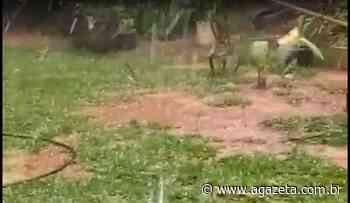 Muniz Freire registra chuva de granizo em comunidades do interior - A Gazeta ES