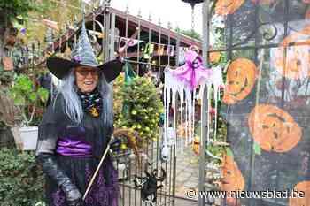 """Rita bouwt compleet Halloweendorp in eigen tuin, maar dit jaar blijven poorten door corona gesloten: """"De opbouw neemt zeker een week in beslag"""""""
