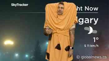 Halloween 2020: Jordan Witzel dresses as a Glamorgan cheese bun