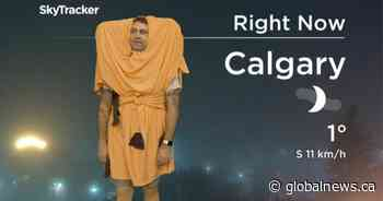 Calgary meteorologist Jordan Witzel dresses as Glamorgan cheese bun for Halloween 2020
