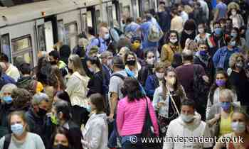 New York transport hubs will fine passengers for not wearing face masks
