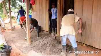 Campesinos en Vegachí se unen para mejorar sus viviendas - Telemedellín