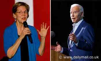 Elizabeth Warren 'pushing to be Joe Biden's Treasury Secretary'
