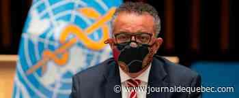 Première réunion d'experts internationaux et chinois sur l'origine du virus (OMS)