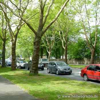 Neues Wohnviertel in Soest - heute Infoabend online - Hellweg Radio